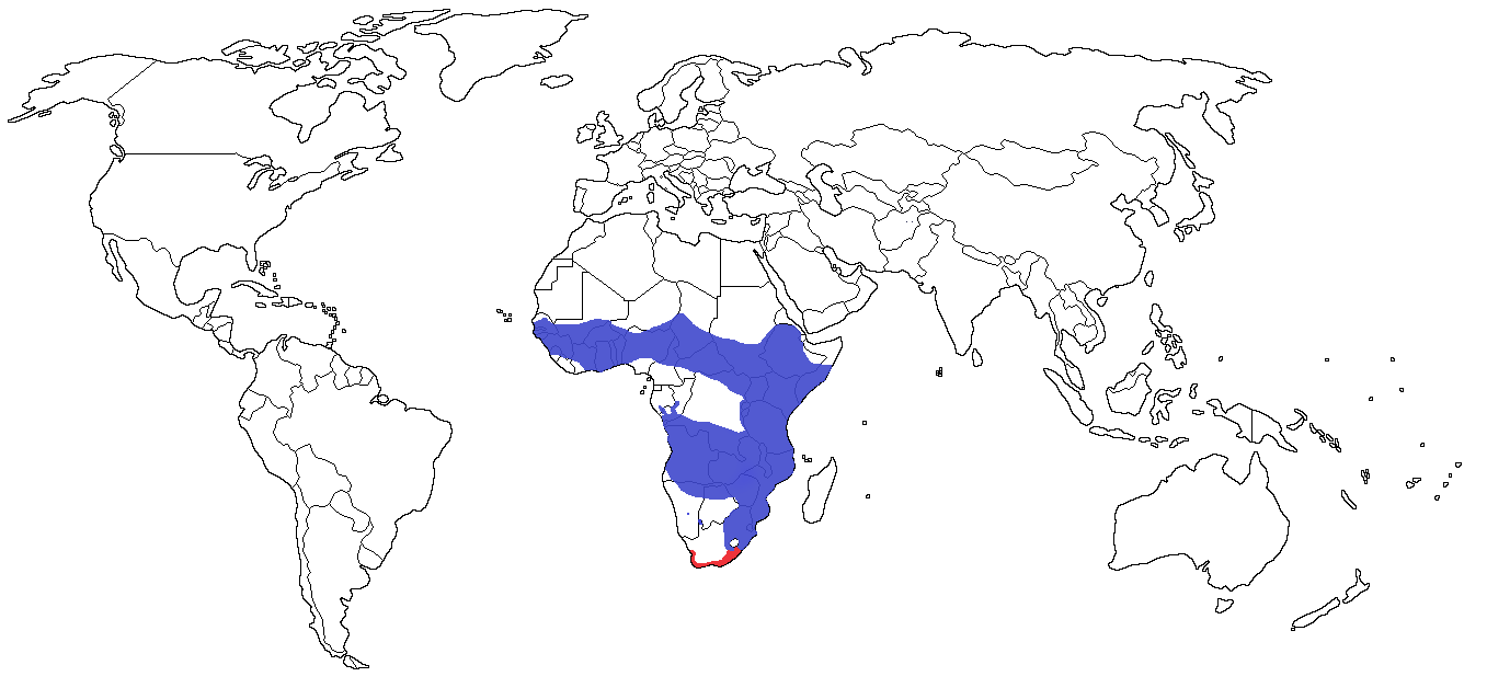 Serval Species Range Map